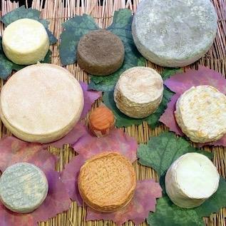 Основные виды бургундских сыров