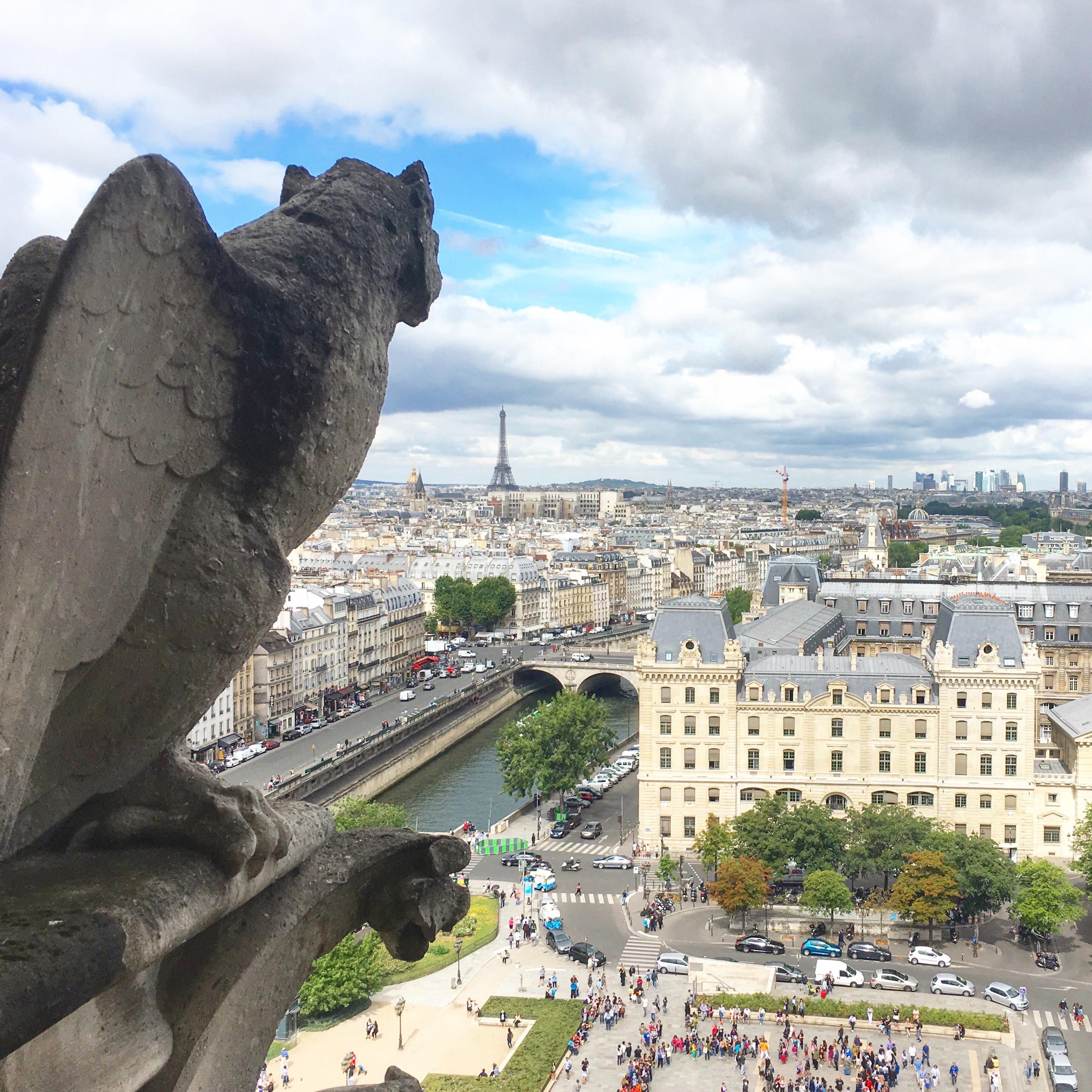Собор Парижской Богоматери с подъемом на колокольни